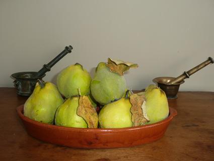 Fruto: membrillos