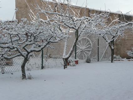 Jardín casa El Carretero en invierno